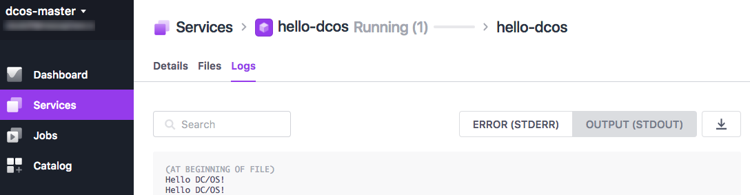 Running containerized service in the DC/OS UI