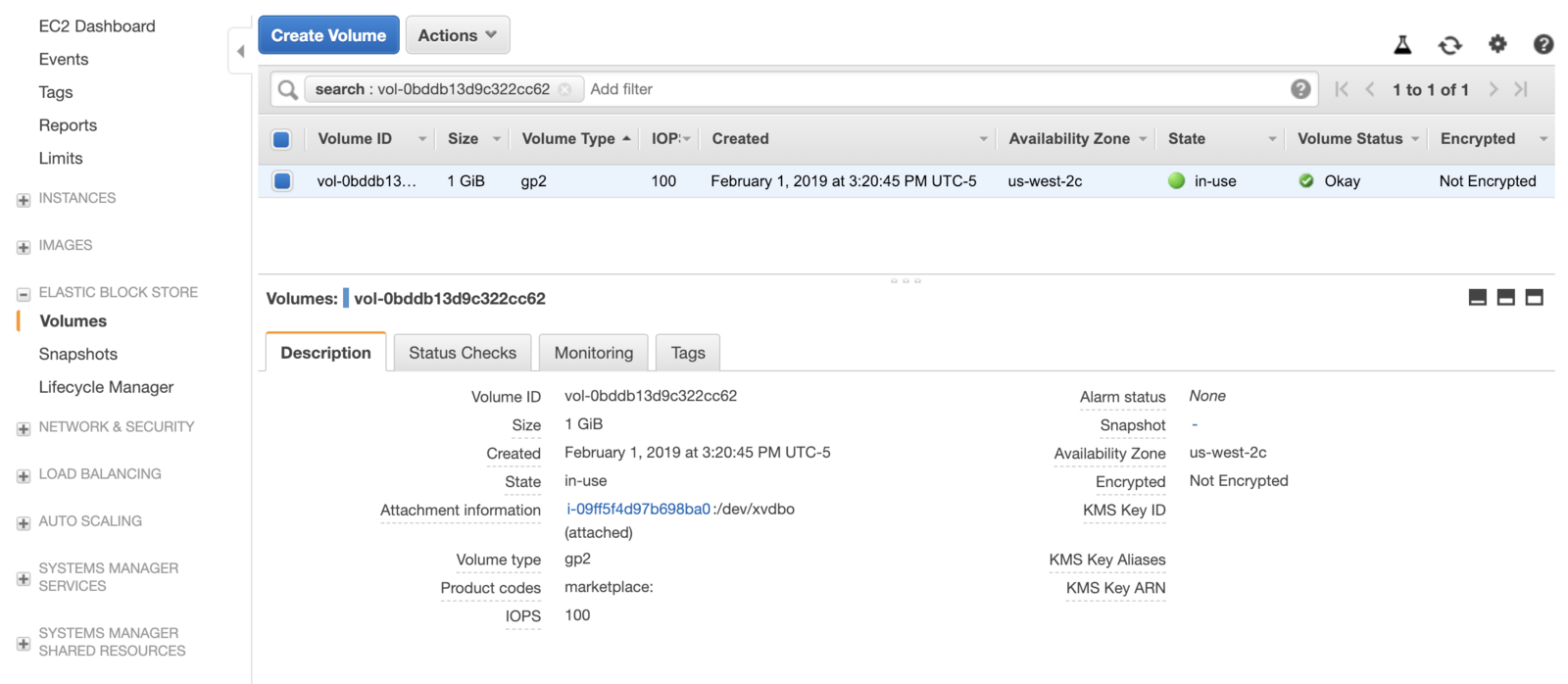 "Screenshot of AWS EBS from above ""in-use""."